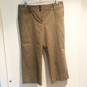 Ann Taylor Loft Tweed Crop Pants